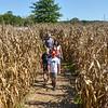 MET 093018 Corn Maze