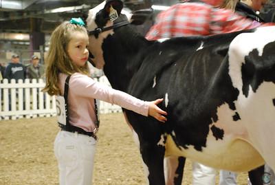 Pennsylvania Spring Holstein 2018
