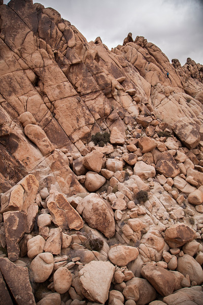 The scenic boulders of Joshua Tree fall away as Kelsey scrambles to the top of a small formation.