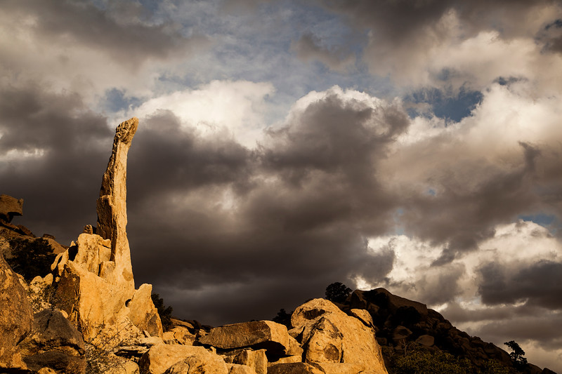 The Aiguille de Joshua Tree rises high in a spot of sunlight as the evening clouds drift by behind.
