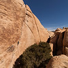 Pat cruises the sustained and absolutely beautiful <i>Illusion Dweller 5.10</i> in Joshua Tree.