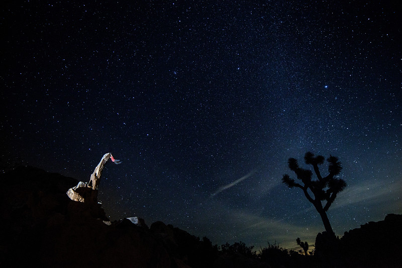 A self portrait of some silliness on the Aiguille de Joshua Tree.