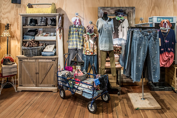 2018-06-01 Clothes Hound - © Studio 616 Photography-4