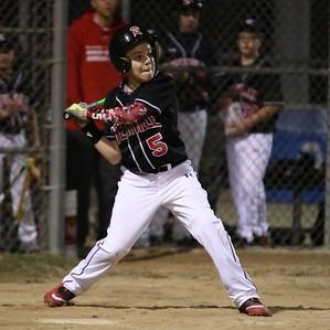 Quinn's Renegades 2018 Baseball Season