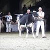 Royal18-Holstein-9775