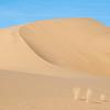 Eureka Valley Sand Dune