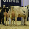 SchauDerBesten18-0006