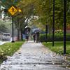 MET 090818 Rain Walk
