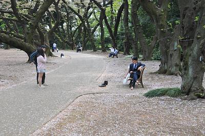 Shinjuku-gyoen