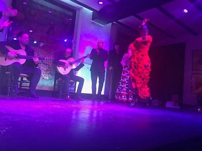 Flamenco performance in Seville - Grace Penn