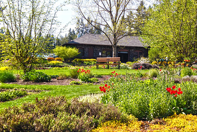 Spring Magic at Manito