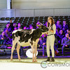 SwissExpo2018_Holstein-8789
