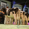 SwissExpo2018_Holstein-9111