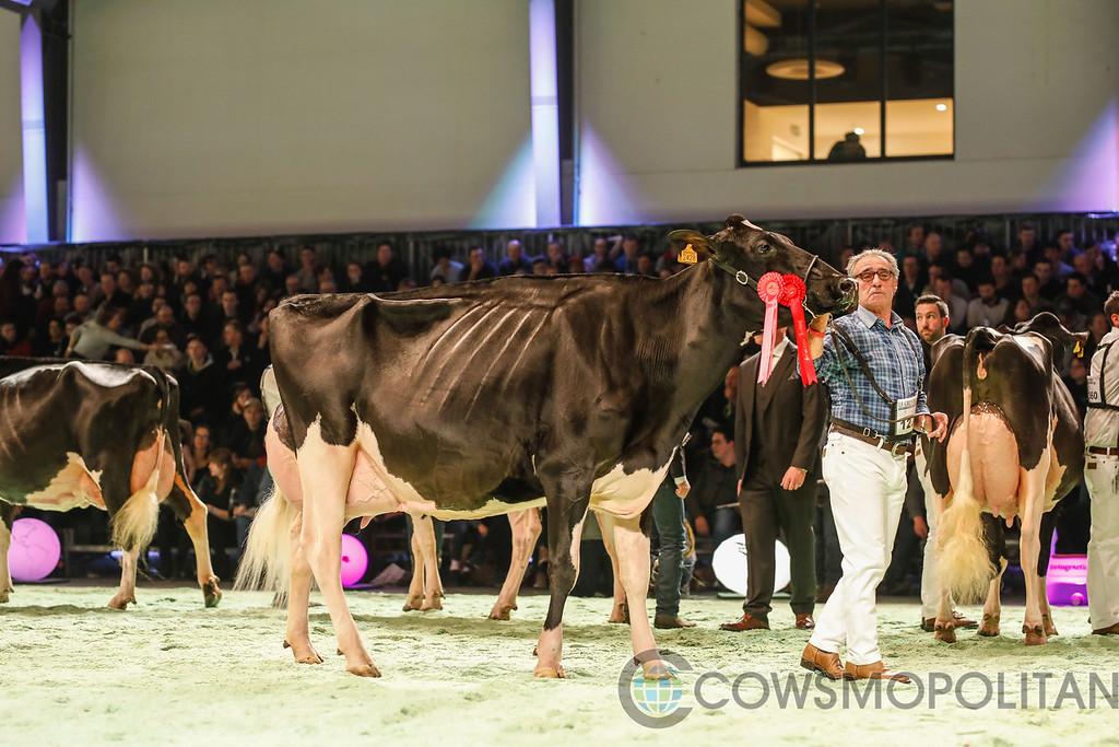 SwissExpo2018_Holstein-9722