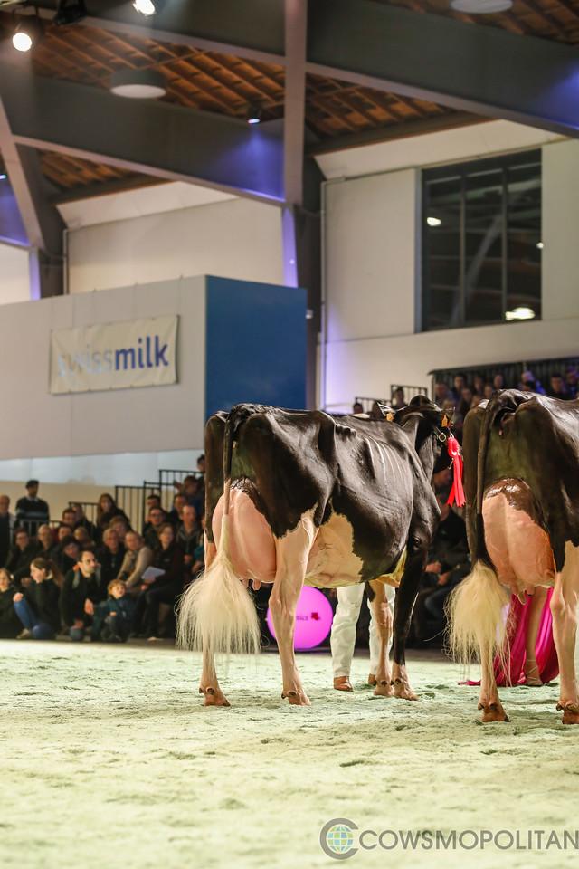 SwissExpo2018_Holstein-9716