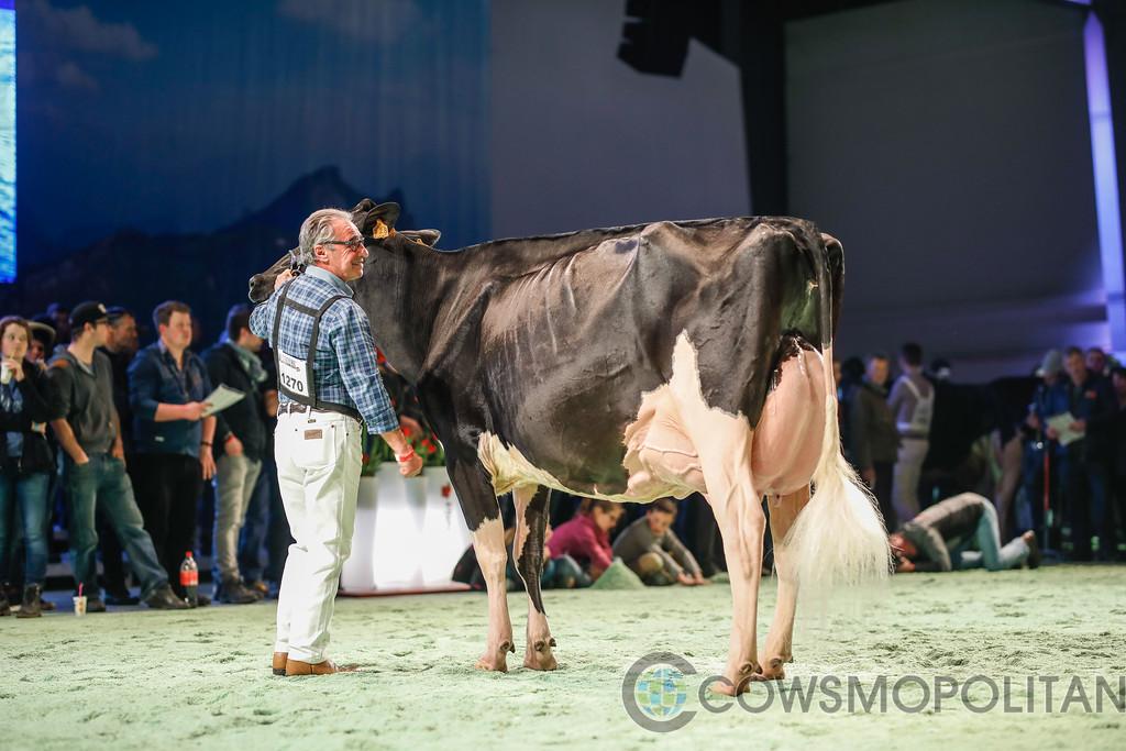 SwissExpo2018_Holstein-9750