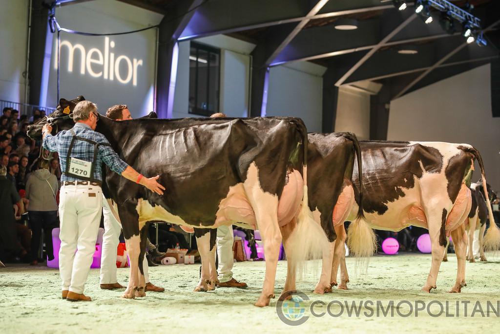SwissExpo2018_Holstein-9696