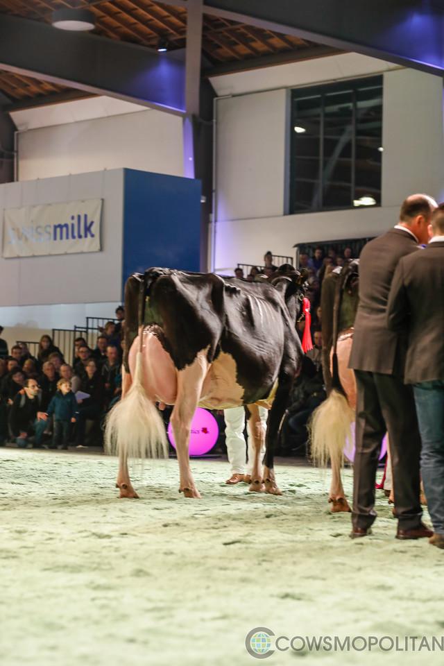 SwissExpo2018_Holstein-9717