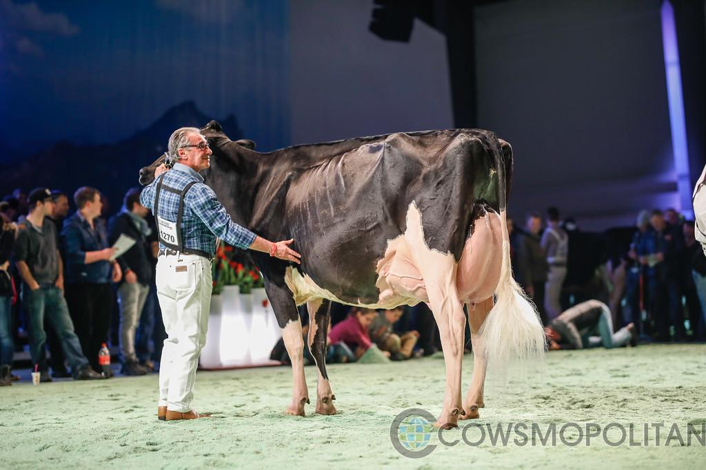 SwissExpo2018_Holstein-9749