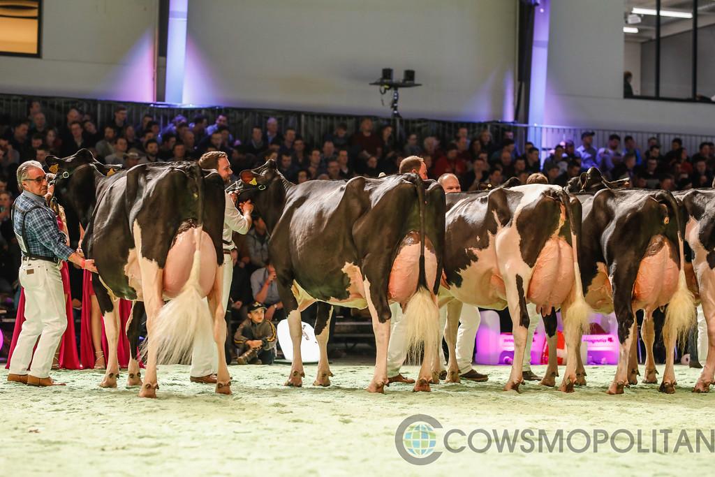 SwissExpo2018_Holstein-9711