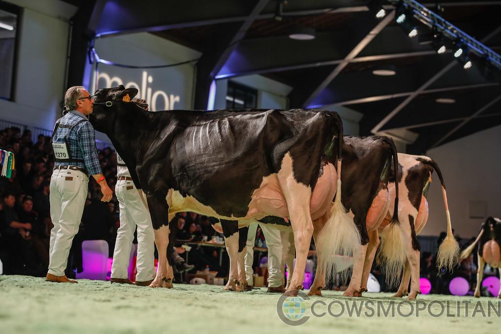 SwissExpo2018_Holstein-9699