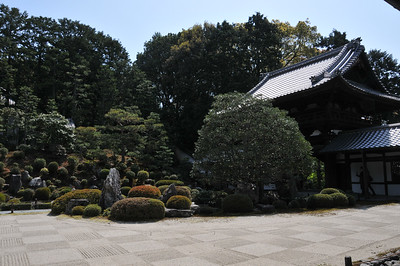 Tofuku-ji Buddhist Temple