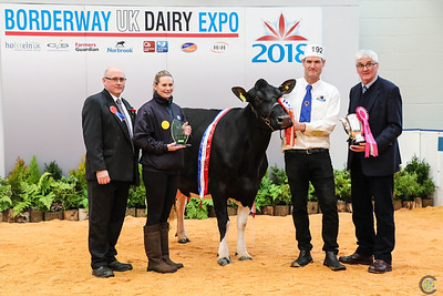 UK Dairy Expo 2018 British Friesian