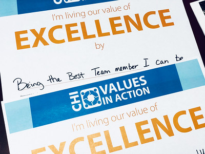 Values - Excellence (2018)