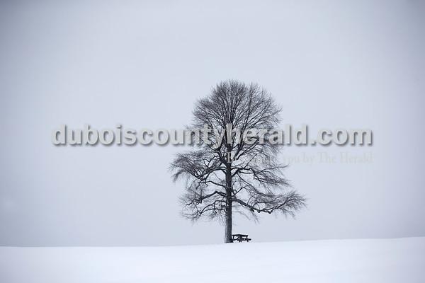 180115_SnowDay06_BL.jpg