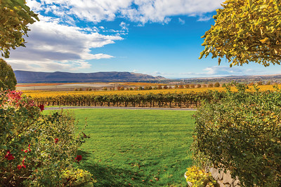 Wines of the Pacific Northwest - 18