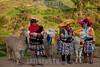 Peru : Mujeres con llamas en Cuzco , Peru / Women in traditional costume in Cuzco / Peru : Frauen in traditioneller Tracht präsentieren Touristen ihre Lamas © Patricio Crooker/LATINPHOTO.org