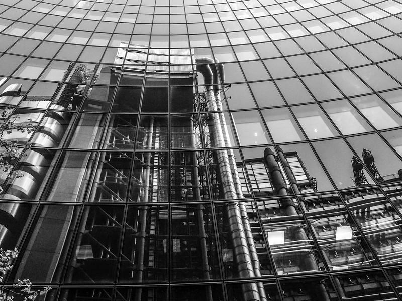 Lloyds Reflected