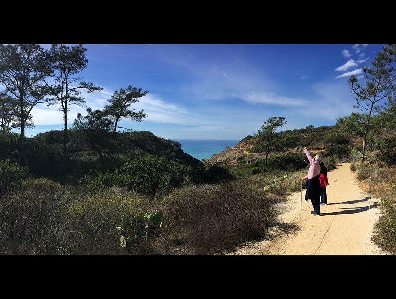 We had a beautiful day of hiking down at Torrey Pines (San Diego), getting to know Anthony's aunt and uncle better ... hearing new stories of family past, and getting to learn about the people he came from.