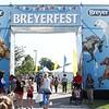 Attending BreyerFest at the Kentucky Horse Park.  7/13/2018
