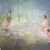 Seminole Dream