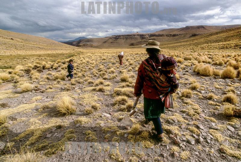 Argentina : pobladora de la Puna con sus hijos , Jujuy / Puna settler whith her childs, Jujuy province / Argentinien : Indigene Frau mit Kind iin der Provinz Jujuy © Silvina Enrietti/LATINPHOTO.org