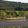 37421+37254 north of Tain working the 10:01 Inverness Milburn Yard - Thurso - Wick - Inverness Milburn Yard 13/05/18