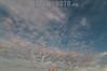 Argentina : Antenas de telefonía celular en la ciudad de Firmat , ciudad de 20000 habitantes en el sudeste de la Provincia de Santa Fe / Mobile phone antennas in the city of Firmat, Santa Fe, Argentina / Argentinien : Mobilfunkantennen in Firmat - Telekommunikation - Antennenmast - Antenne - Technik © Patricio Murphy/LATINPHOTO.org