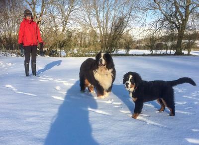 1 fred tom snow feb (43)