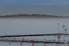 Hargshamn fog