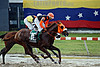 Venezuela : June 24, 2015. General and varied environment of horse racing in the national hippodrome of the city of Valencia , Carabobo state / Pferdesport in Vlencia © Juan Carlos Hernandez/LATINPHOTO.org