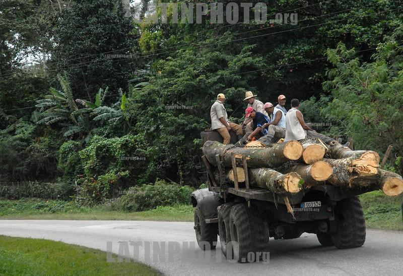 Cuba : Vista de los campos de la provincia de  Santiago de Cuba - 12 de enero de 2017 / Transport of wood / Kuba : Transport von Holz © Agustín Borrego Torres/LATINPHOTO.org