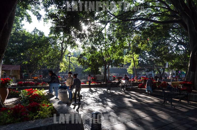 Mexico : Plaza de Armas de la Ciudad de Oaxaca , Zócalo , Oaxaca de Juárez / Main Square of the City of Oaxaca , Zócalo , Oaxaca de Juárez / Mexiko : Park in Oaxaca © Andrea Díaz-Perezache/LATINPHOTO.org