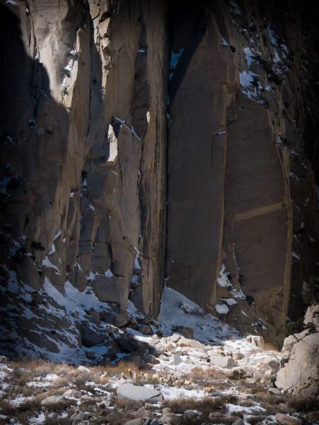 Sierra Nevada Bighorn Sheep, Pine Creek Canyon, Bishop, CA