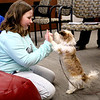 Daliyah Oberhart (left), 9, gives a high 10 to Tia Rose during a meet-and-greet event with the Fox Valley Therapy Dog Club at the Sandwich Public Library on April 17. Oberhart had first met dogs from the group when they came to visit her school, and wanted to come see them again.