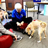 Jan Lauwers (center), president of the Fox Valley Therapy Dog Club, and Missy (right) demonstrated some of the ways that they play together.