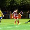 Velocity Cup Felixstowe v AFC Sudbury Town