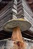 Mäuseplatten oder Stadelbeine bei einem Lagerspeicher in Ernen © Patrick Lüthy/IMAGOpress