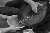 Paraguay - Paso Yobai - Guaira - Octubre 2009 - Utilizan mercurio para la separación del oro - El Mercurio es altamente contaminante para el medio ambiente y las personas - Pobladores y familias campesinas de la zona extraen oro en forma artesanal. Muchos han cambiado sus trabajos en los cultivos agrícolas para dedicarse a esta nueva labor - Se ha encontrado un importante yacimiento de oro en la localidad de Paso Yobai / Gold mine in Paso Yobai / Paraguay : Goldmine in Paso Yobai © Amadeo Velázquez/LATINPHOTO.org