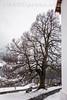 Parkbank bei der Kirche in Ernen © Patrick Lüthy/IMAGOpress